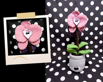 Plush pink orchids APLUCHES plant shaped