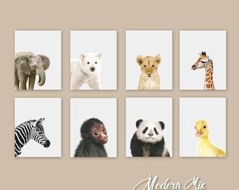 Baby Animal Nursery Art Nursery Prints Zoo Nursery Wall Art Baby Wall Art Gender Neutral Nursery Decor Baby Girl Baby Boy Gift