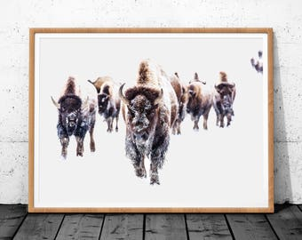 Buffalo Print, Bison Print, Modern Minimalist, Digital Download, Bison Wall Art, Modern Photography, Buffalo Photography, Wilderness Nursery