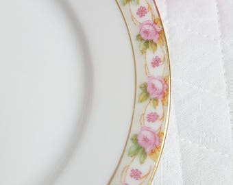 Bread Butter plate set Vintage Kaiserian Maria Theresia Austria Carlsbad China White Pink Roses Gold Trim Farmhouse Gift for Her Fun to Have
