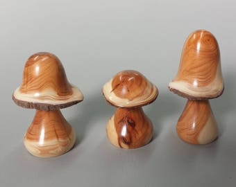 Turned wooden mushrooms