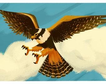 Endangered Species Postcard: Northern Aplomado Falcon
