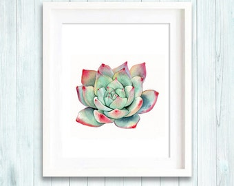 Succulent print of watercolour painting, cactus, botanical painting, green home decor art print