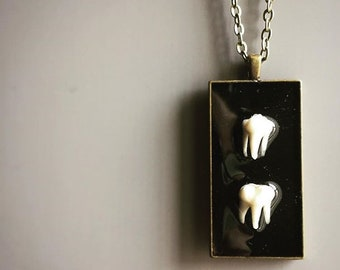 Raccoon tooth molar necklace