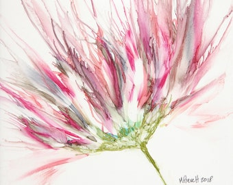 Pink Zinnia #3