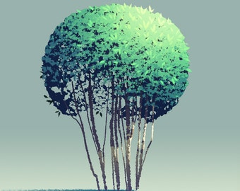 Tree Series: Round Bush - Limited Edition Print