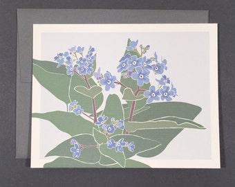 Forget-Me-Not Card Set Blank Botanical