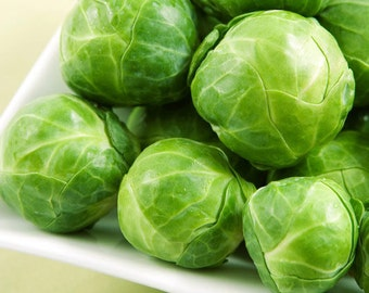100 Seeds Brussel Sprouts, Long Island Improved, A Garden Favorite, Cheapseeds