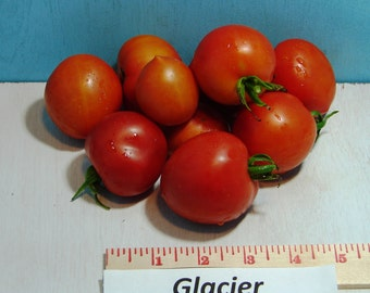 Glacier Tomato Seeds Heirloom Garden Seeds Non-GMO 30+ Seeds Early Season Naturally Grown Open Pollinated Gardening