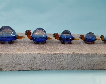 Tortoise Glass Family