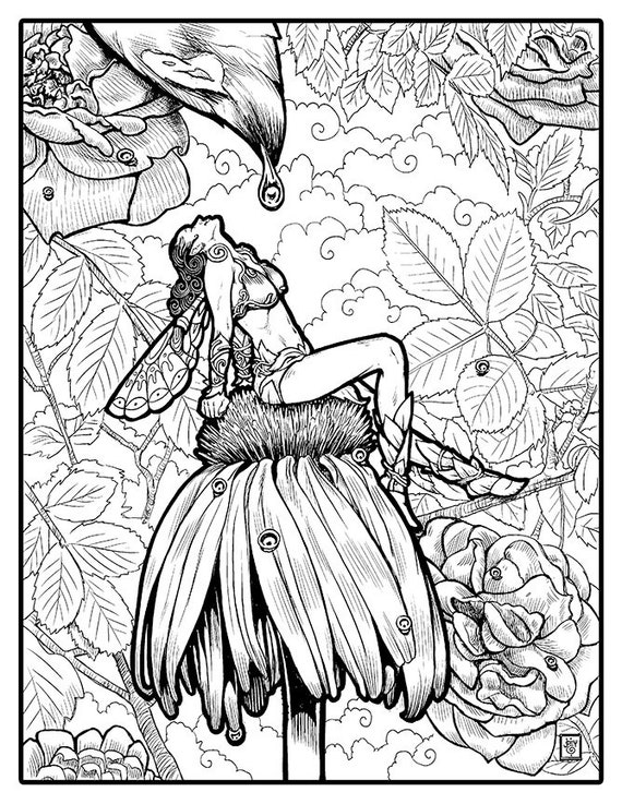 Fairy with Dewdrops | Joey Gates - Premium Coloring Page with Full Color Illustration
