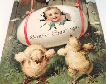 Antique Vintage Easter Post Card, Chicks with Boy in Egg, Easter Greetings