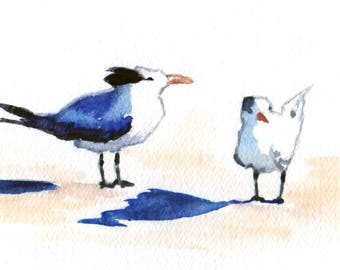 """Bird Painting, """"Terns,"""" Watercolor Daily Painting, 5x7 Matted"""