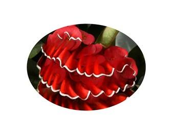 flamenco dress, ruffles, surrealism, dress and flower