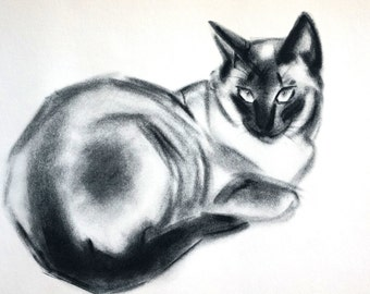 Clare Turley Newberry - 1956 - SEAL POINT SIAMESE Cat - Watchful Female Cat -  Professionally Matted Cat Print Ready to Frame