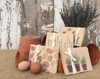 Lavender Farm Note Cards — Four Packs of Four