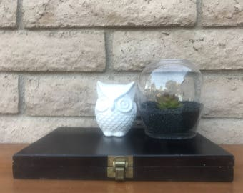 Faux succulent with deep black pebbles and beautiful vase