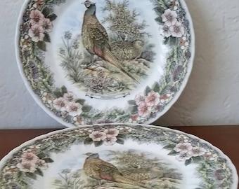 Churchill Myott, Wildlife Series, Phasiana/Pheasant, 10 Inch Dinner Plate, Made In England, Set of 2 Dinner Plates.