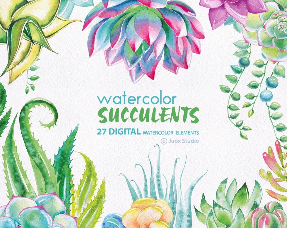 Watercolor Succulents Clip Art Hand Painted Cactus