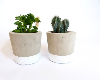 Winter Collection | Concrete plant pot | by Olive Jennings Furniture