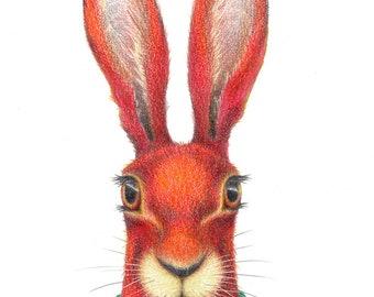 The Problem Hare Print