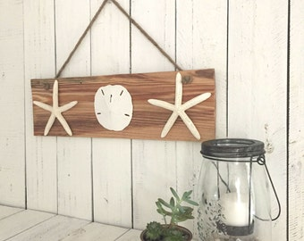 Starfish Art, Sand Dollar Decor, Rustic Wood Wall Decor, Coastal Cottage Decor, Beach House Decor, Nautical Wall Art, Seashell Wall Art