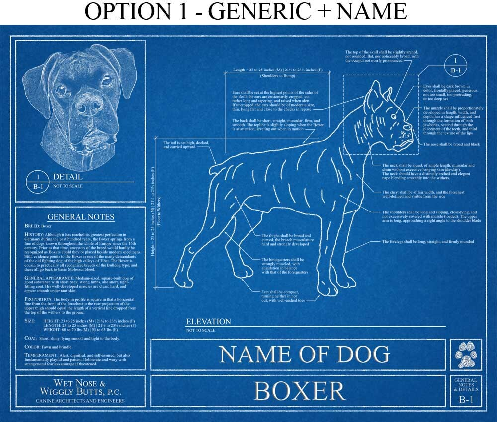 Personalized boxer dog blueprint boxer dog art boxer dog ampliar malvernweather Gallery