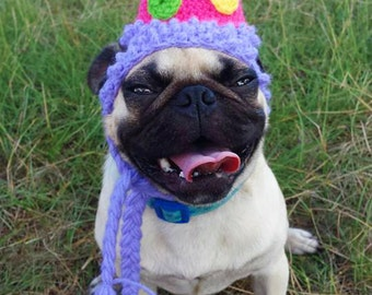 Birthday Party Dog Hat Costume - Cats and Small Dogs - The Party Dog's Birthday Hat