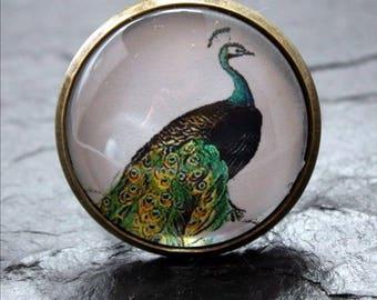 Peacock bird cabochon ring