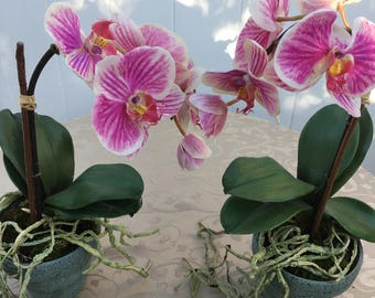 Silk deep rose orchids with soft pink hues with purple and pink garden flowers .greenclaypot.