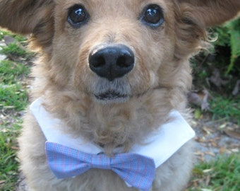 DOG BOW TIE- Matching mens dress shirt and dog bow tie.  (Men's shirt sold separately!) Like father like pup! Interchangeable bow ties!