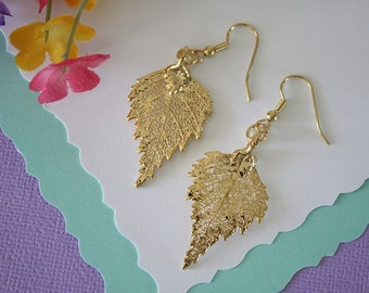 Gold Leaf Earrings, Birch Leaf, Real Leaf Earrings , 24kt Gold, Nature, Organic Earrings, LESM194