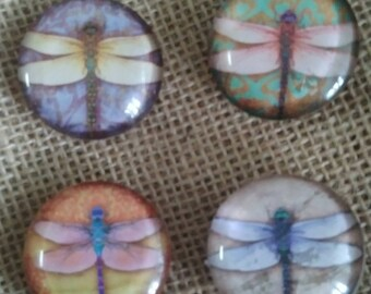 Dragonfly Magnets - Refrigerator Magnets - Glass Magnets - Dragonfly Decor