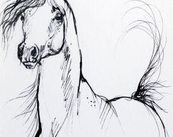 Arabian horse, equine art, horse portrait, equestrian, cheval, original pen drawing