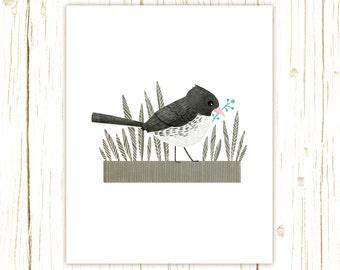 Junco Print -- bird art -- bird art 52 birds stephanie fizer coleman illustration dark eyed junco