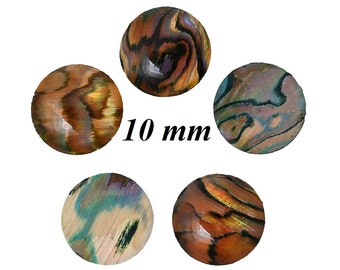 10 Cabochons, 10 mm, Shell, mother of pearl