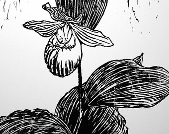 "Showy Lady's Slipper, hand carved woodblock print, 11""x16"", artist proof"
