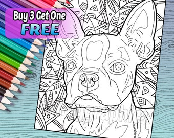 Boston Terrier - Adult Coloring Book Page - Printable Instant Download