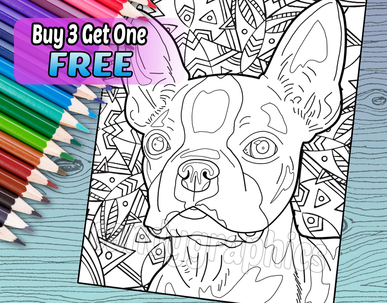 Boston Terrier Adult Coloring Book Page Printable Instant