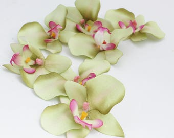 Green Orchid | Phalaenopsis Orchid | Flower Crown | Hair Accessory | Millinery Flowers | Wedding Crown | Tropical Flowers | The Blue Hutch