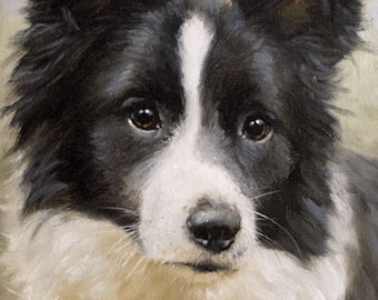 Aceo Dog Print, Border Collie. From an Original Painting by Award Winning Artist JOHN SILVER. Personally signed. BC012AC