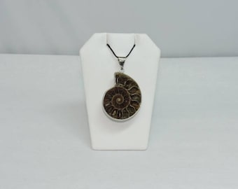 Ammonite Necklace and Earrings