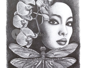 Lan: A3 Giclee Art Print of original pencil drawing