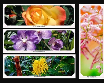 Handmade Photo Bookmarks - The Flora Collection