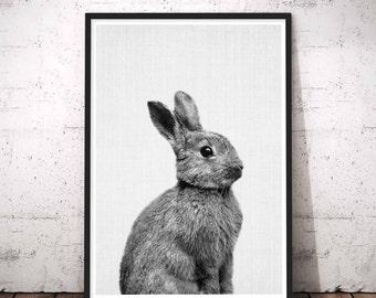Bunny Rabbit, Large Woodland Decor, Standing Bunny Rabbit Wall Art, Bunny Photo, Woodlands Animal Wall Art, Woodlands Nursery Wall Print