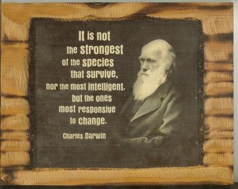 Charles Darwin Quote  - Wooden Plaque