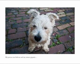 Westie Dog Card - Blank Inside - Just For Fun - Mary Shelley Frankenstein Greeting Card