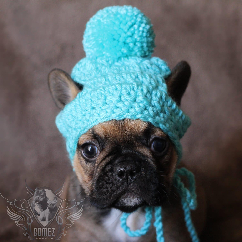 French bulldog clothe puppy beanie pom pom hat dog clothes zoom nvjuhfo Choice Image
