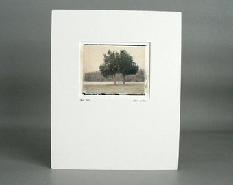 Watercolor Art Matted Image Transfer Pear Field Fence Trees