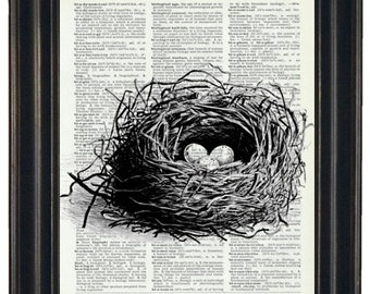 Bird Nest Dictionary Art Book Page Print 8 x 10 Upcycled Wall Art Dictionary Art Print